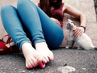 Stray cats and heels